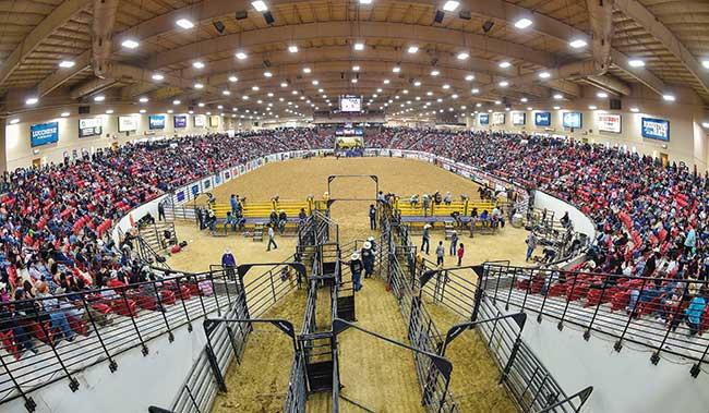 2018 Indian National Finals Rodeo Las Vegas Nv Fairs